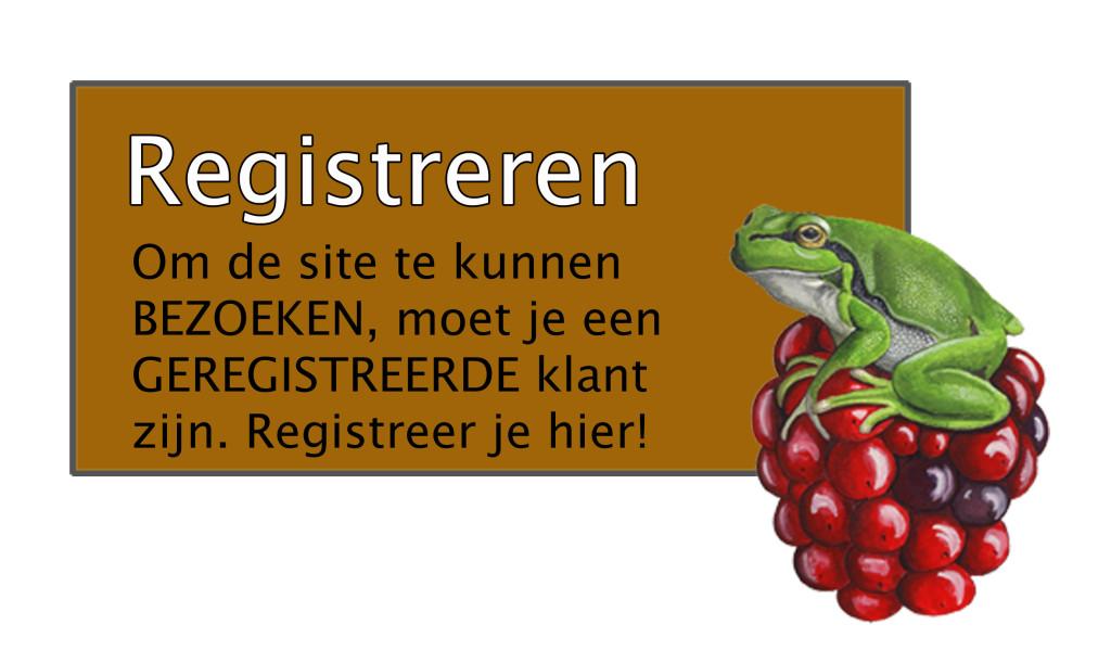 Registeren-2
